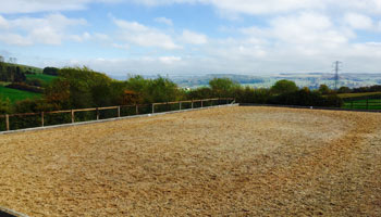All weather racehorse training facilities in cheltenham